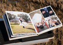 app para organizar fotos