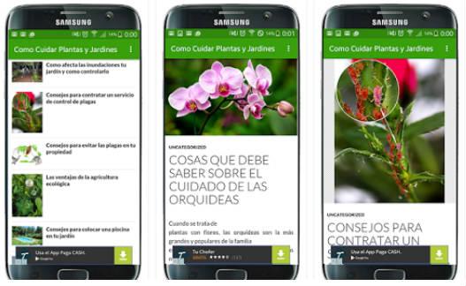 apps para conocer plantas