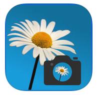 app para conocer plantas